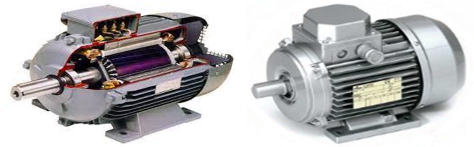 موتور آسنکرون قفس سنجابی